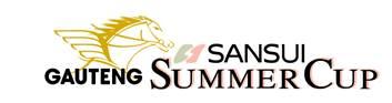 Gauteng SANSUI Summer Cup