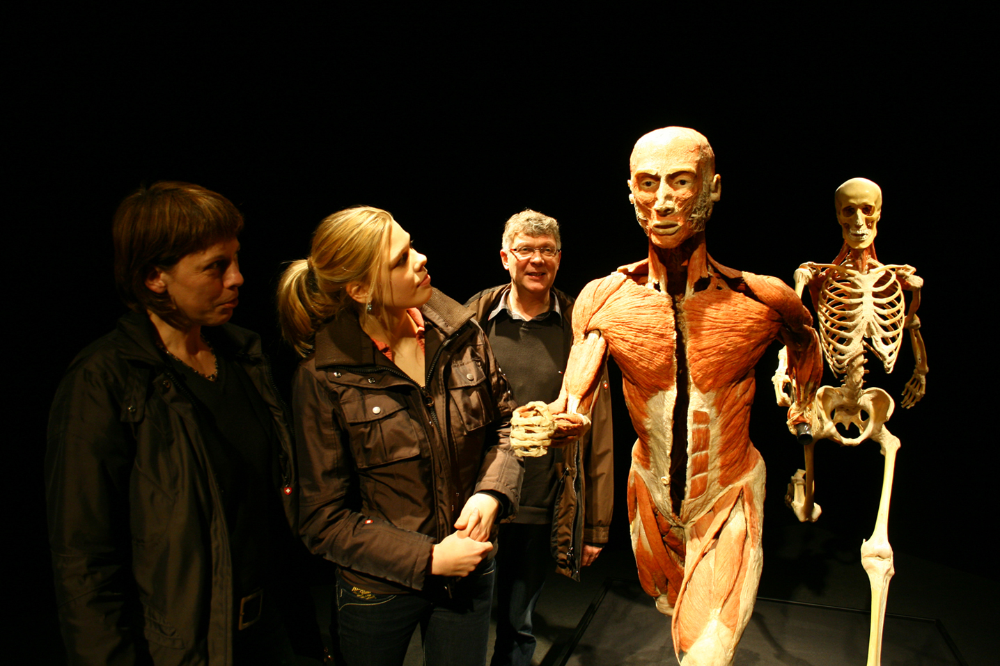 Bodyworlds Vital 1. Credit- Body Worlds